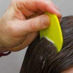 delousing shampoo
